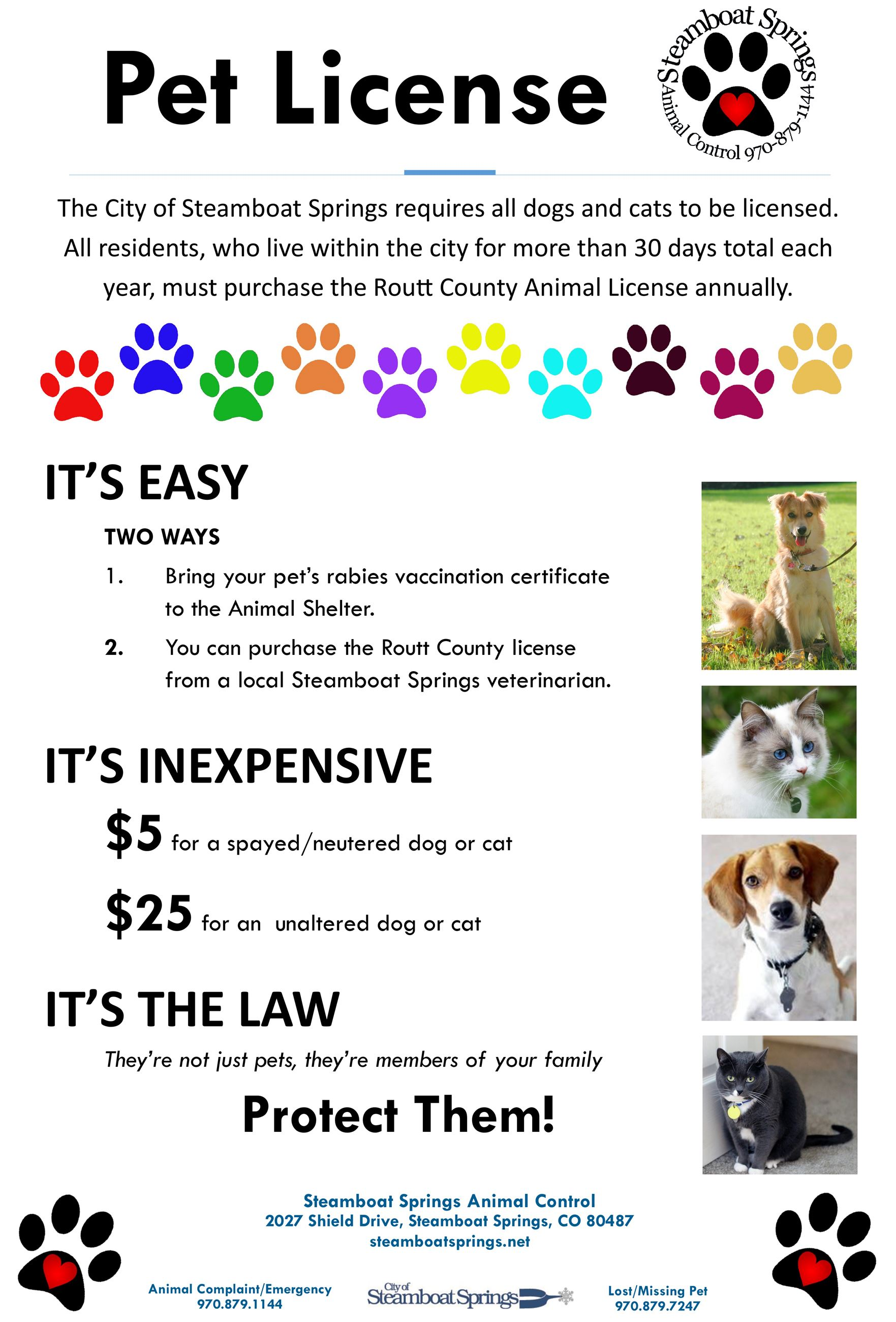 Pet Licenses NewsFlash