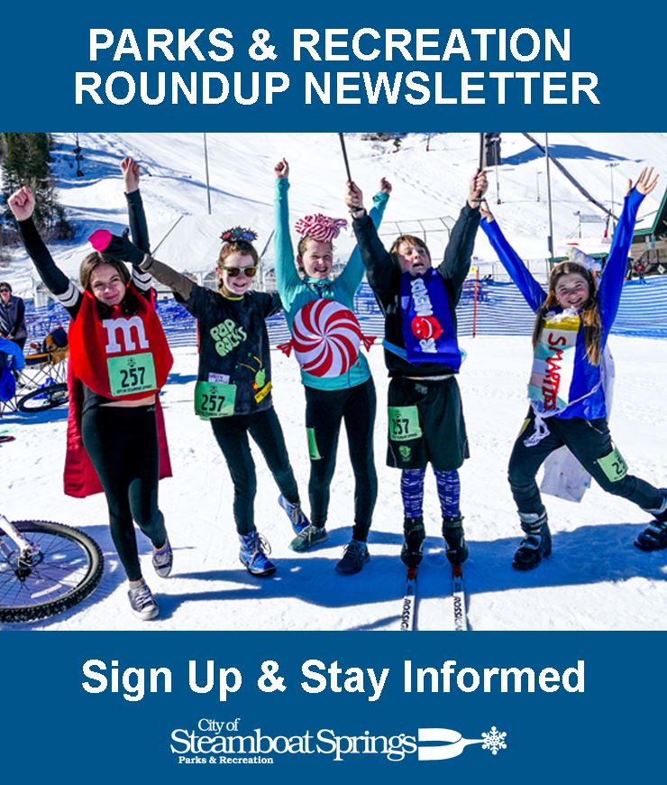 Newsletter NewsFlash