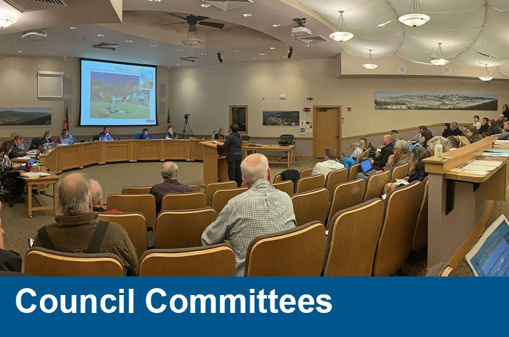 Council Committees