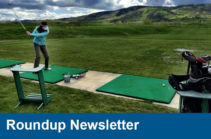 Roundup Newsletter Summer