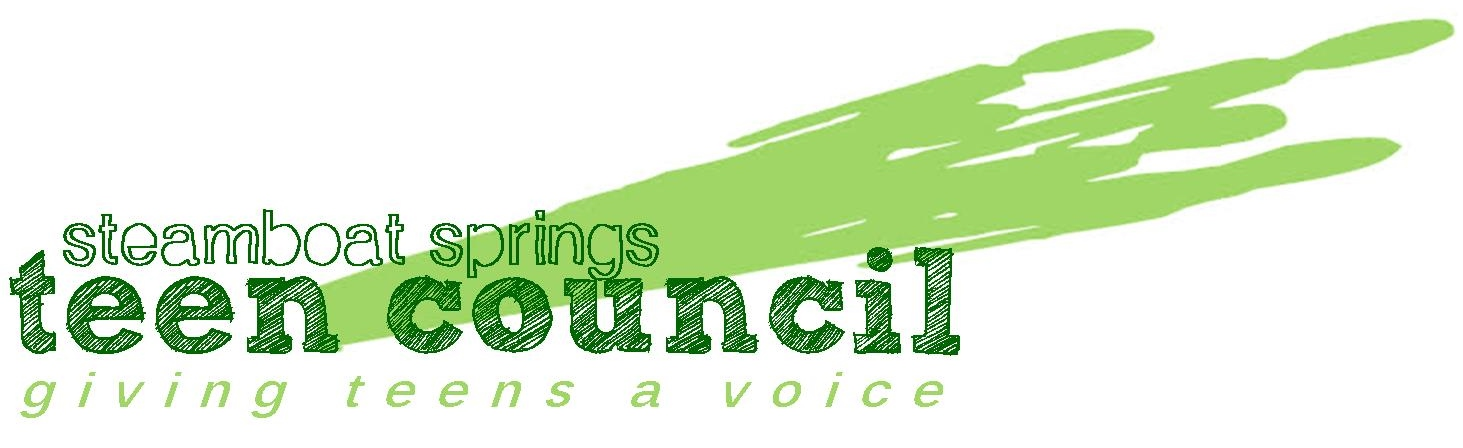 2013 Teen Council Logo.jpg